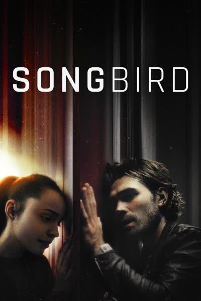 پوستر پرنده آواز خوان