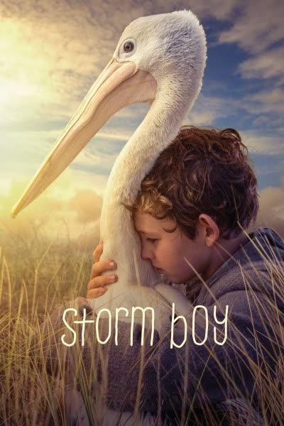 پوستر پسر طوفان